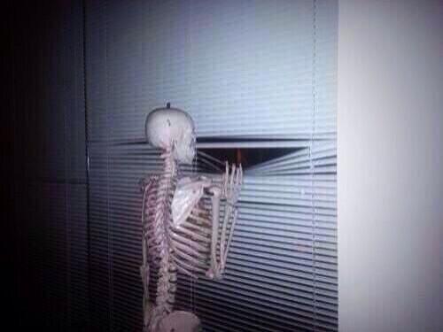 Calavera esperando por la ventana por si alguien viene a festejarle su cumpleaños