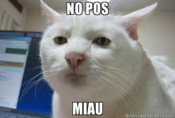 MEME NO POS MIU