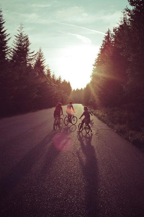 chicos montados sobre unas bicicletas atravesando por una carretera