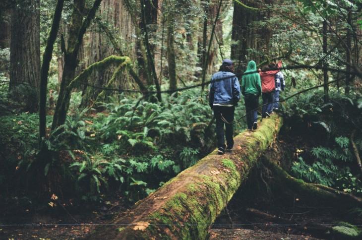 cuatro chicos caminando sobre un puente en la naturaleza