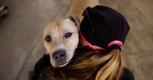 Abrazar un perro es una gran forma de sentirte mejor