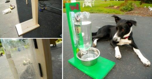 Practico y economico un dispensador de agua para perros made in casa