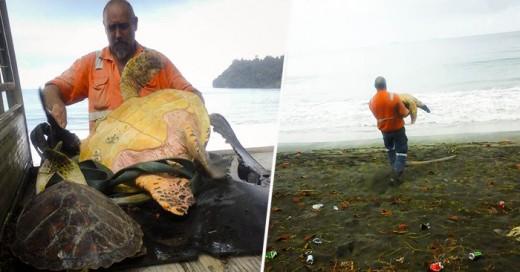 Le compran al Mercado Negro dos tortugas marinas para devolverlas al mar
