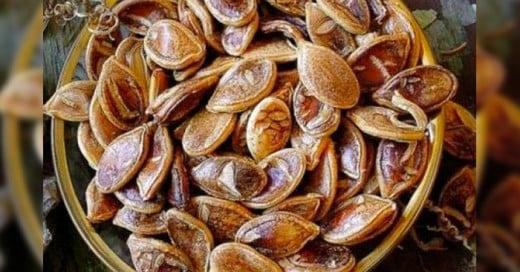 Estas semillas encontradas tienen más de 800 años