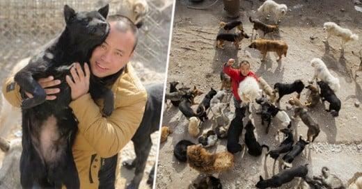 Un millonario que se dedica a rescatar a perros