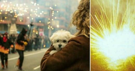 La salvacion para los perros, fuegos artificiales sin sonido