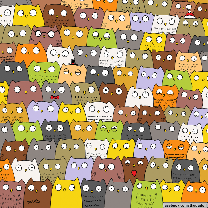 Encuentra al gato oculto entre un grupo de búhos