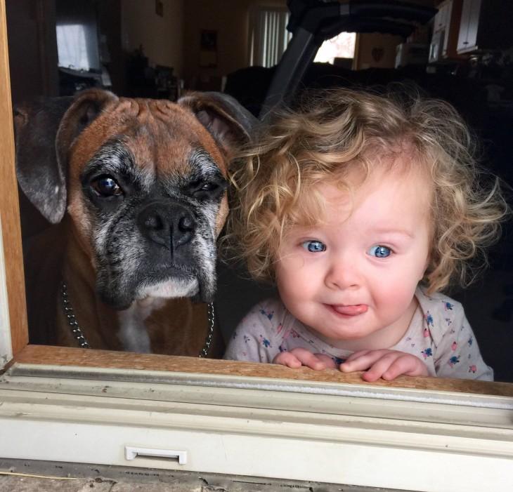 niña junto a su perro asomándose por la ventana