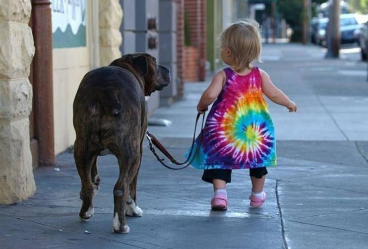 pequeña niña paseando a su perro por una calle