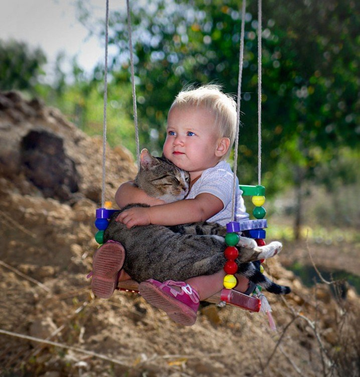 niño arriba de un columpio con su gato en las piernas