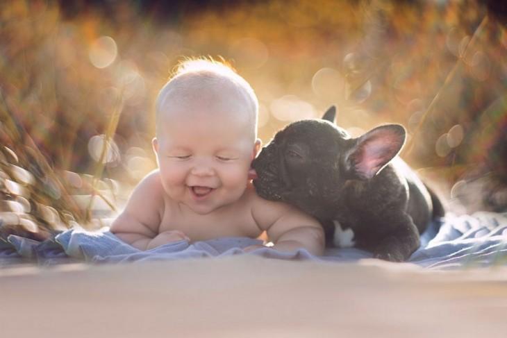 bulldog francés lamiendo el cachete de un bebe acostado al aire libre