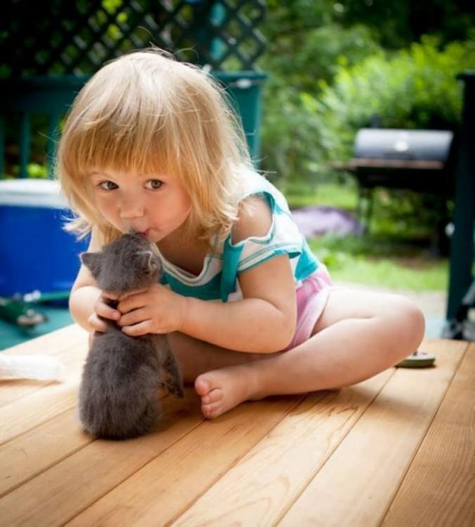 niña dando un beso a su gato gris sentada en el suelo