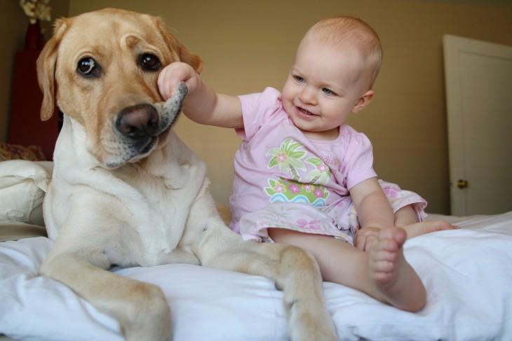 niña agarrando el hocico de su perro sentados en una cama