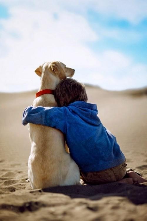 niño sentado en el suelo abrazando a su perro