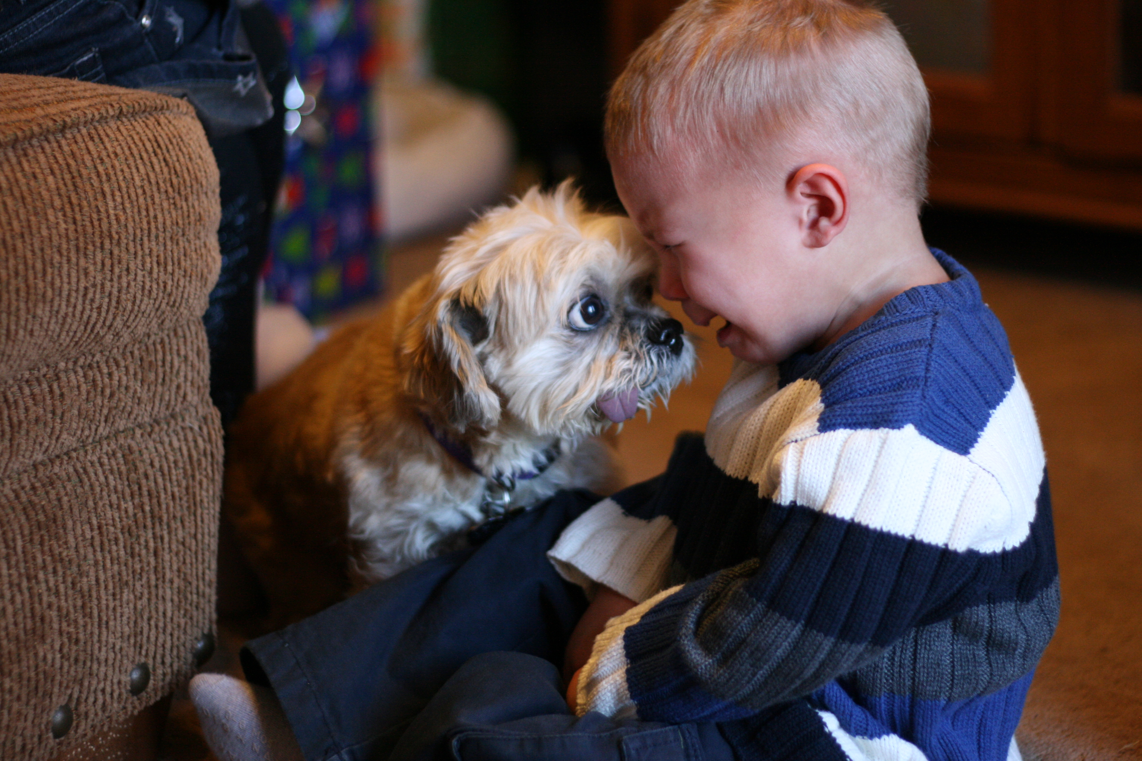 Fotografías demuestran que todo niño necesita una mascota
