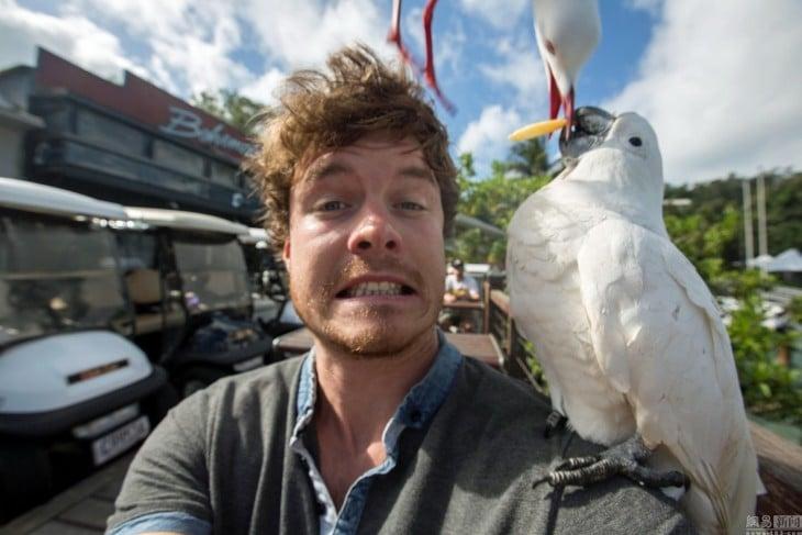 selfie de Allan Dixon con dos aves que intentan quitarse una papa