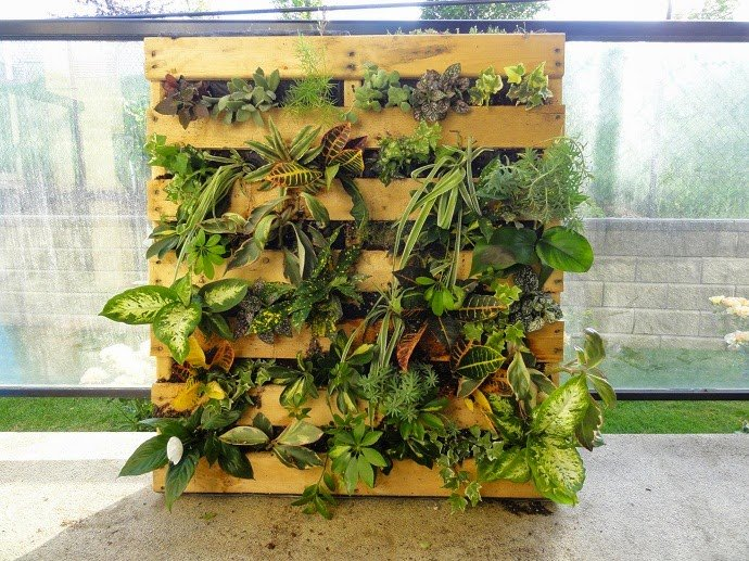 mecetero versatil a base de pallets y plantas de diiferentes especies