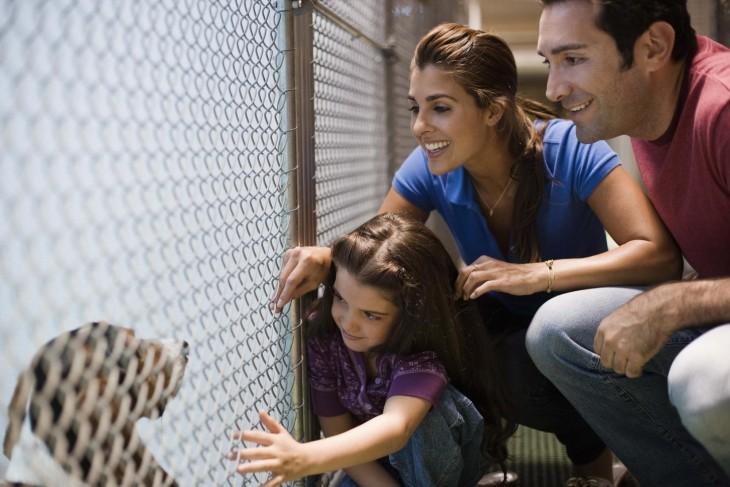 Familia a punto de adoptar un perro