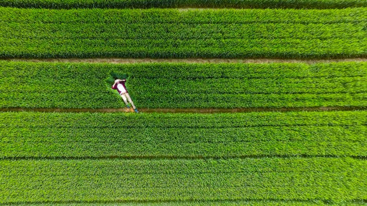Xiwei Embalse en Shandong, China