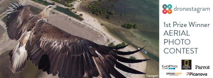 Fotografía de un águila con drone en dronestagram con logotipos de compañías reconocidas