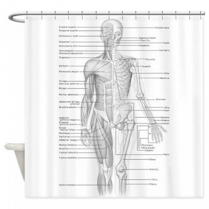 cortina para baño con el diseño de la anatomía humana