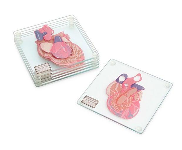 portavasos de vidrio con el diseño de la anatomía del corazón