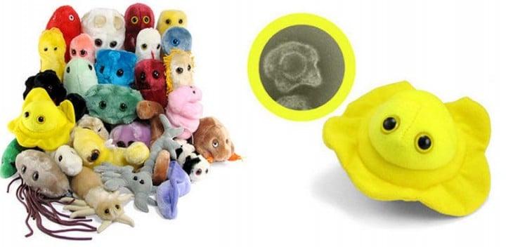 Peluches de microbios gigantes