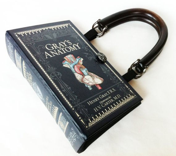 bolsa en forma de libro de anatomía