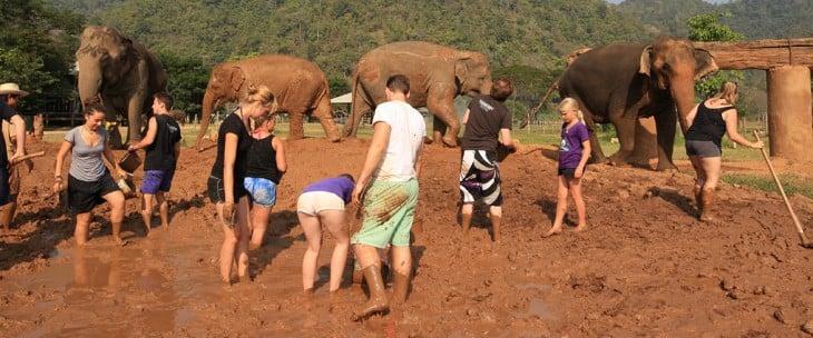 Personas conviviendo con los elefantes en el Elephant Nature Park