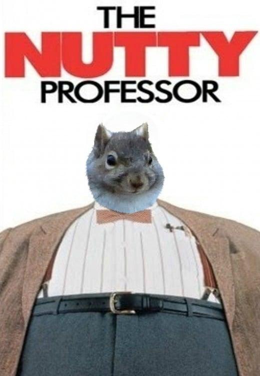 ardilla en el poster del prosor do little