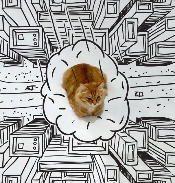 Gato rodeado de dibujos donde simula estar volando sobre una ciudad