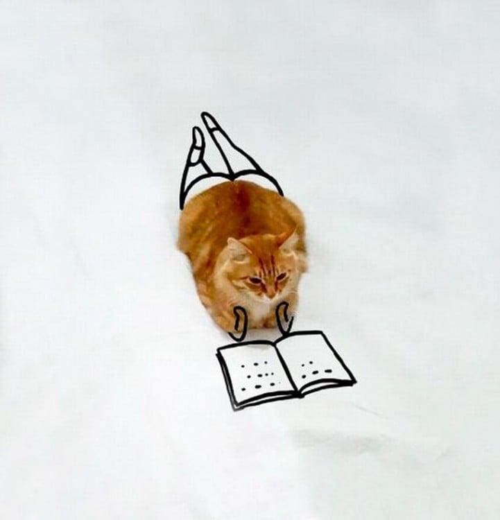Gato sentado en el suelo con un dibujo como si estuviera leyendo