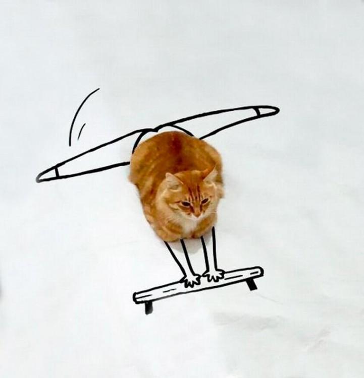 gato con dibujos que simula ser una bailarina