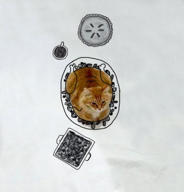 Gato que simula ser un pollo sobre un plato