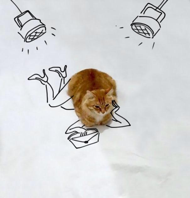 Fotografía de un gato con dibujos que simulan que es una modelo posando