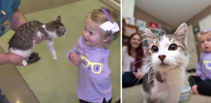 amistad entre Scarlette niña sin un brazo y su gato con sólo 3 patas