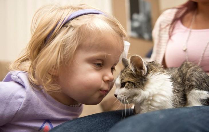 niña apunto de darle un beso a un pequeño gatito