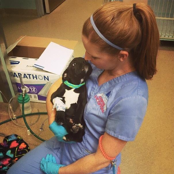 mujer viendo al perrito con amor