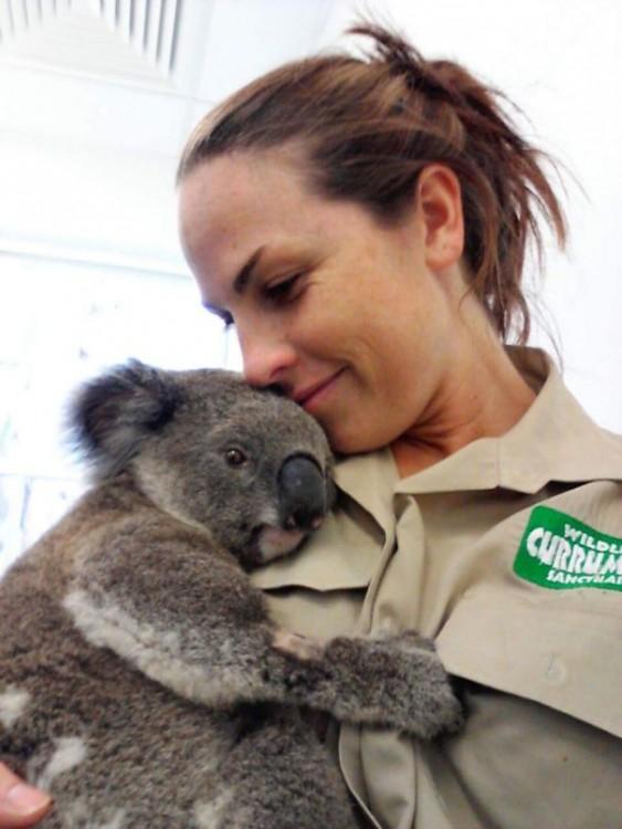 mujer abrazando un koala