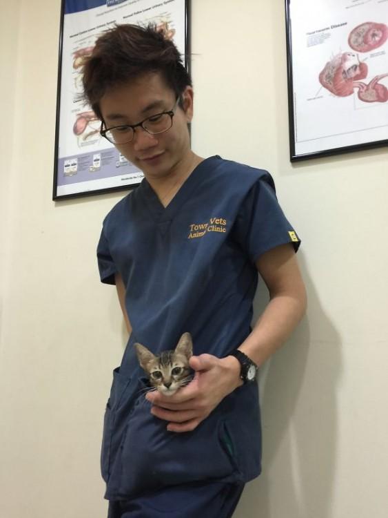 gatito con su cuidador en el hospital