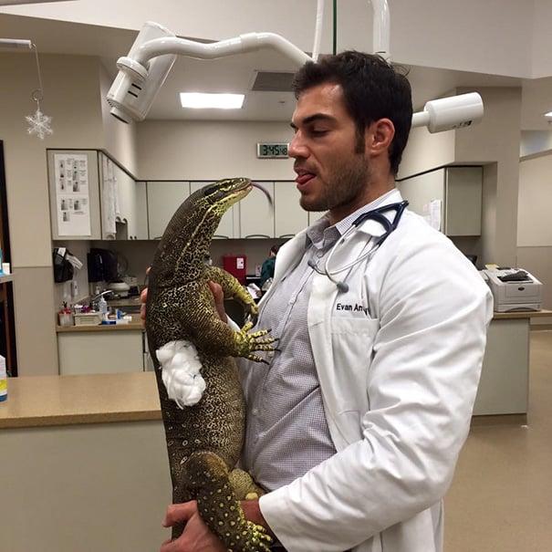 docotr con dragón de comodo