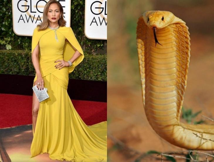jenifer lopez fue comparada con una cobra por distractify 2016