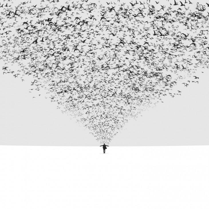 grupo de pájaros saliendo de un hombre que está parado sobre una superficie blanca