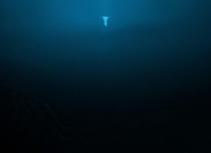 fotografía debajo de una persona que está entrando al mar