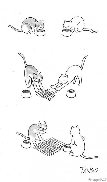 dibujo de dos gatos jugando con sus croquetas