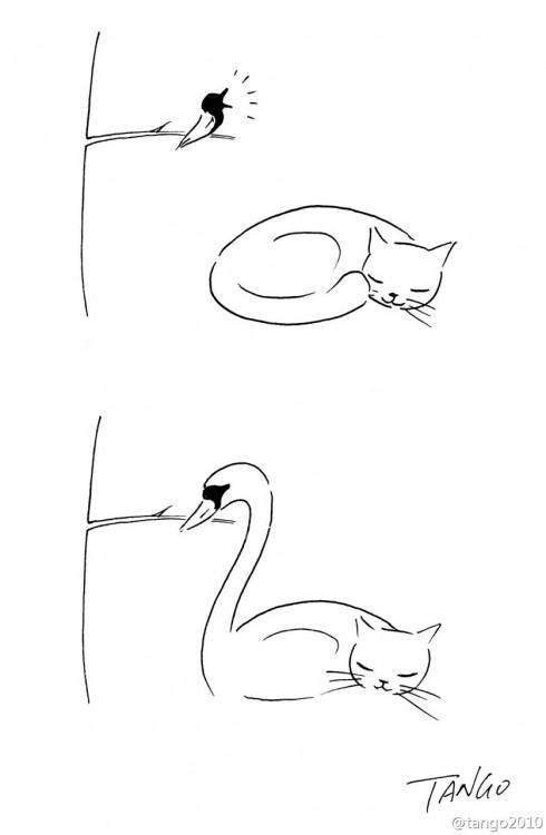 dibujo de un gato y un pájaro que forman un cisne
