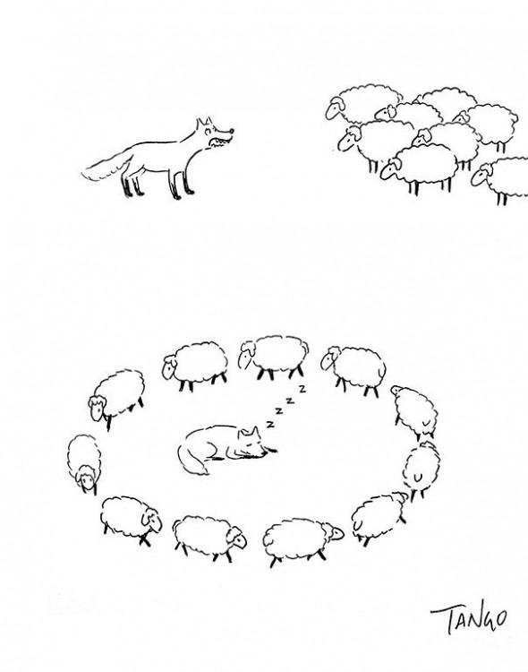 dibujo de un lobo rodeado de borregos