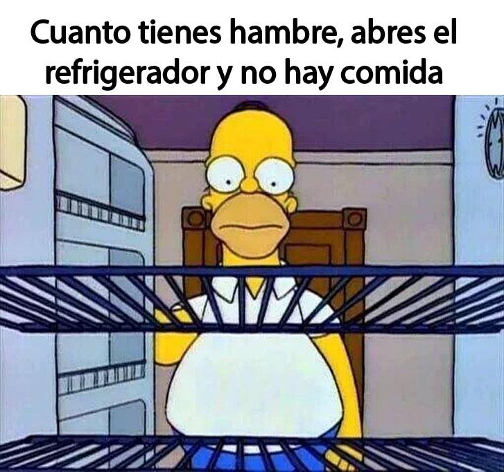 meme de homero abriendo el refrigerador y está vacío