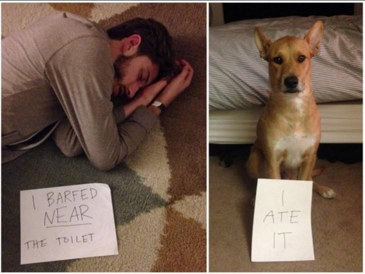 hombre acostado en el suelo y su perro a un costado