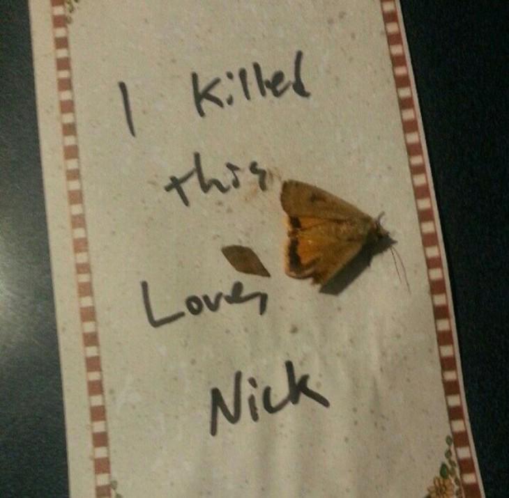 mariposa sobre una hoja de papel con una dedicatoria por parte de nick